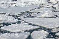 Polar Paradox