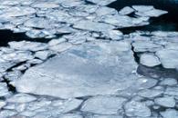 Dwindling Arctic Ice