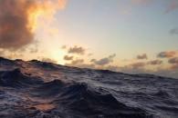 The Ocean's Carbon Balance