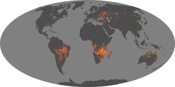 Global Map Fire Image 19