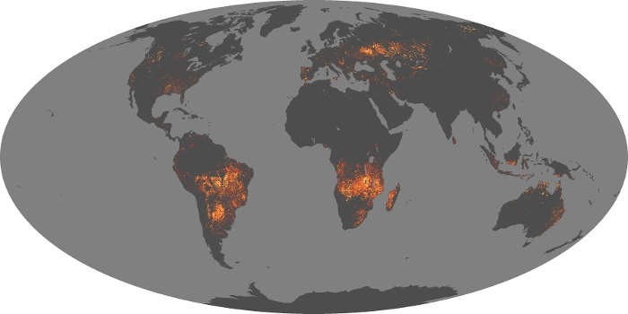 Global Map Fire Image 43