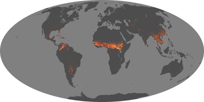 Global Map Fire Image 48
