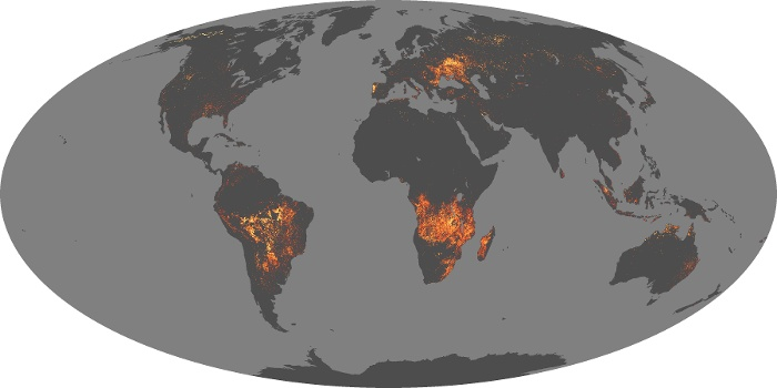 Global Map Fire Image 38