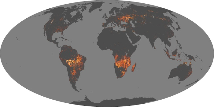 Global Map Fire Image 39