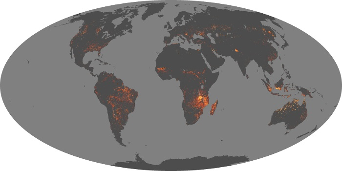 Global Map Fire Image 80