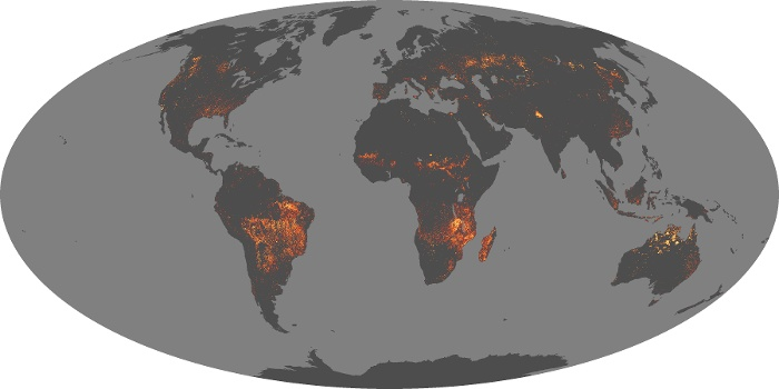 Global Map Fire Image 64