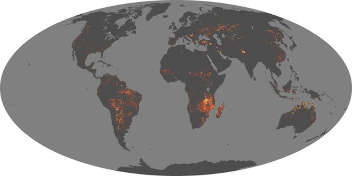 Global Map Fire Image 116