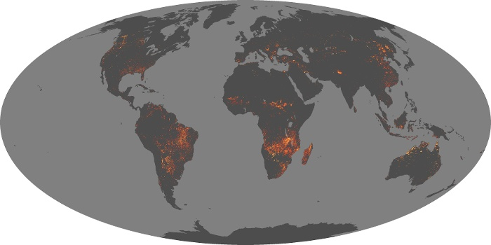 Global Map Fire Image 164