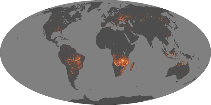 Global Map Fire Image 175