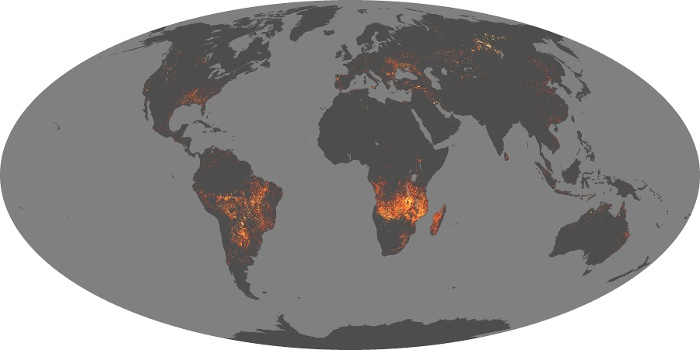 Global Map Fire Image 199
