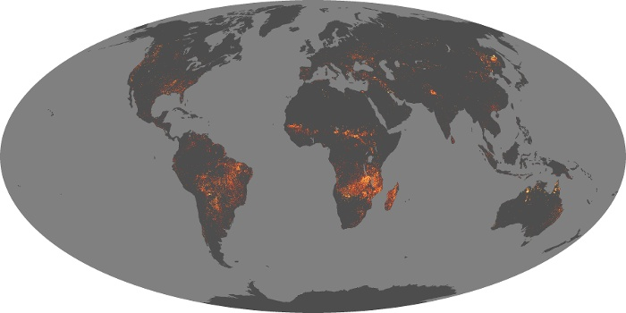 Global Map Fire Image 200