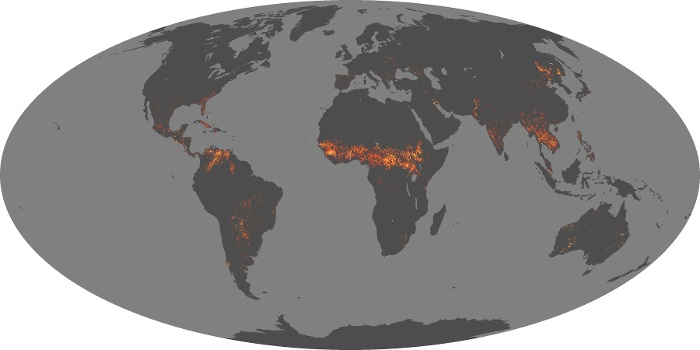 Global Map Fire Image 228