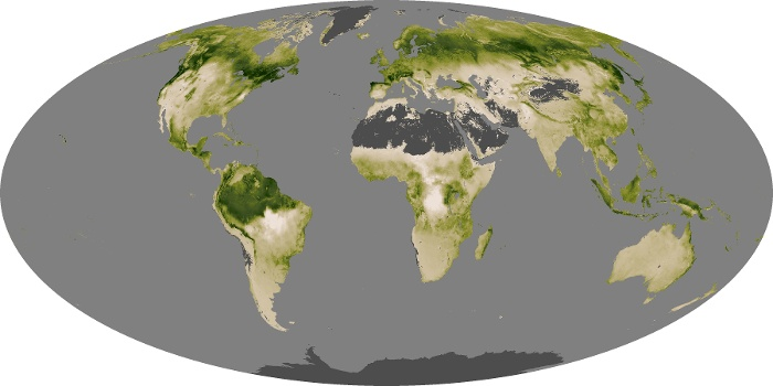 Global Map Net Primary Productivity Image 90