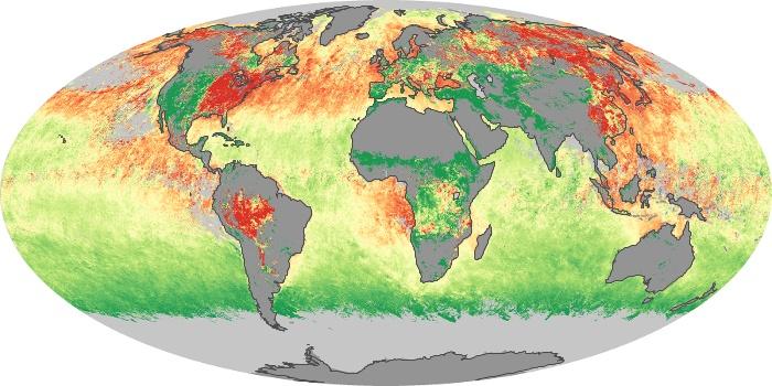 Global Map Aerosol Size Image 7