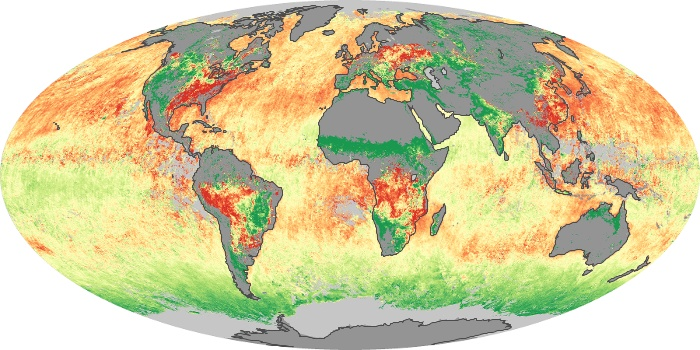 Global Map Aerosol Size Image 45