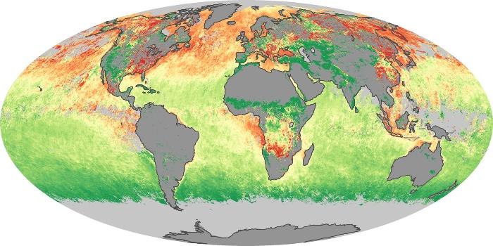 Global Map Aerosol Size Image 55