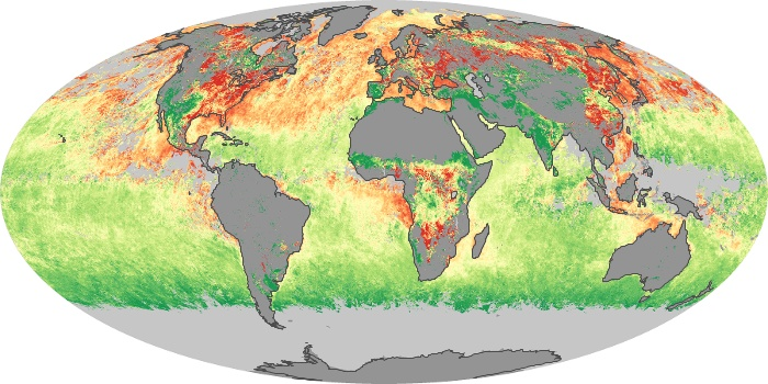 Global Map Aerosol Size Image 78