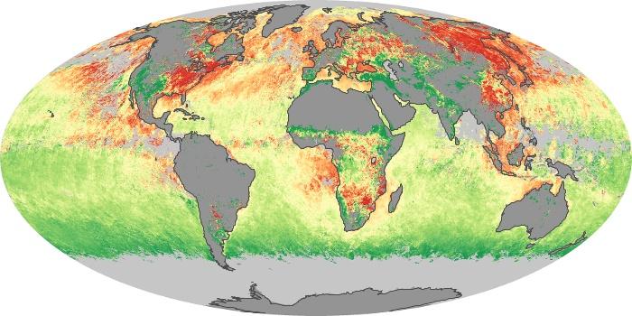 Global Map Aerosol Size Image 79