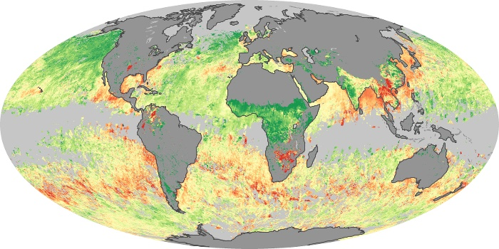 Global Map Aerosol Size Image 134