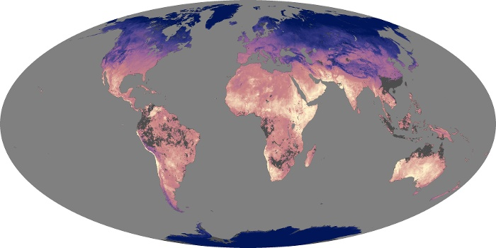 Global Map Land Surface Temperature Image 1