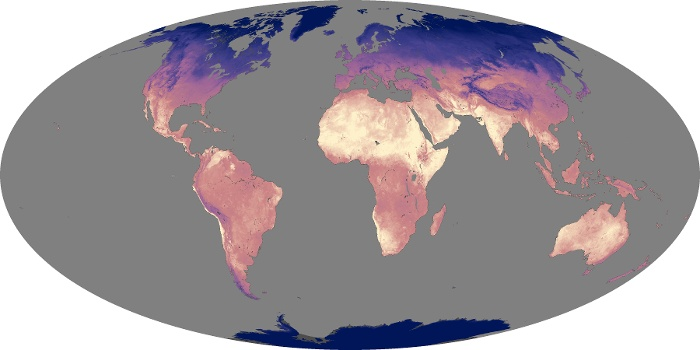 Global Map Land Surface Temperature Image 13