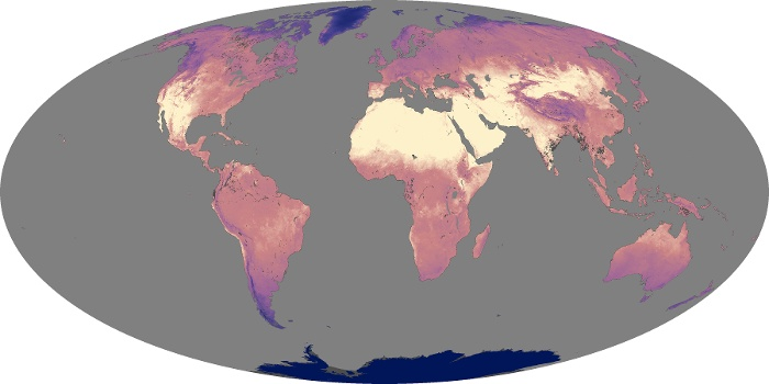 Global Map Land Surface Temperature Image 16