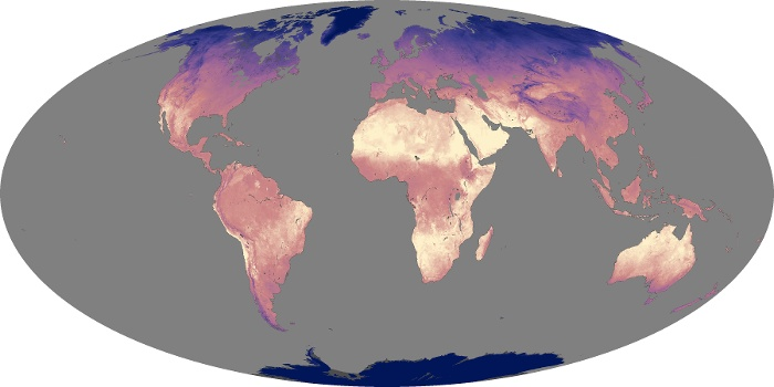Global Map Land Surface Temperature Image 21