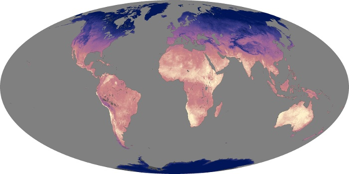 Global Map Land Surface Temperature Image 24