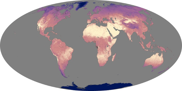 Global Map Land Surface Temperature Image 44