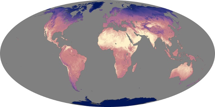 Global Map Land Surface Temperature Image 50
