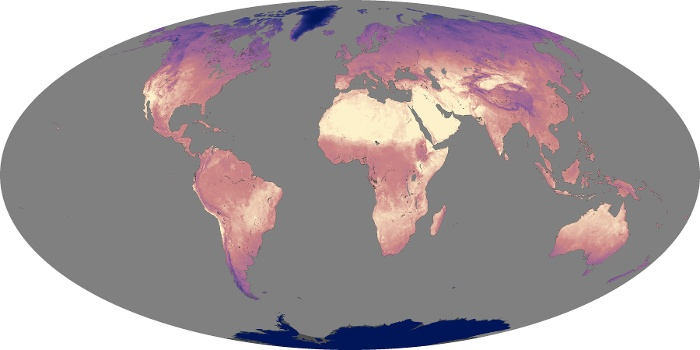Global Map Land Surface Temperature Image 55