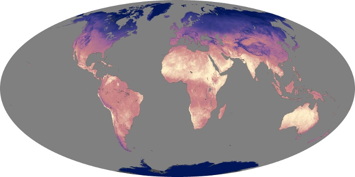 Global Map Land Surface Temperature Image 61