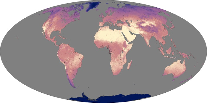 Global Map Land Surface Temperature Image 79