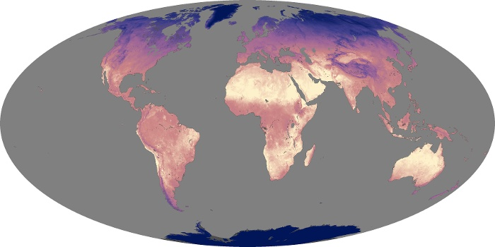Global Map Land Surface Temperature Image 80