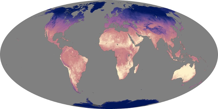Global Map Land Surface Temperature Image 82