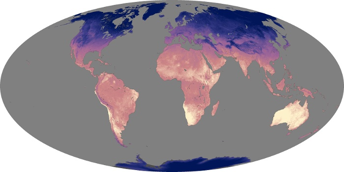 Global Map Land Surface Temperature Image 84