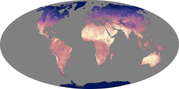 Global Map Land Surface Temperature Image 98