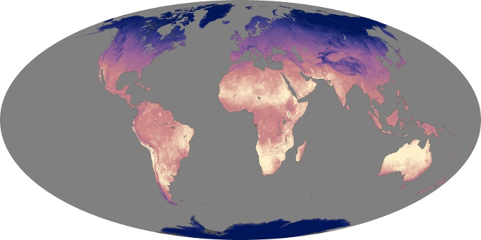 Global Map Land Surface Temperature Image 105