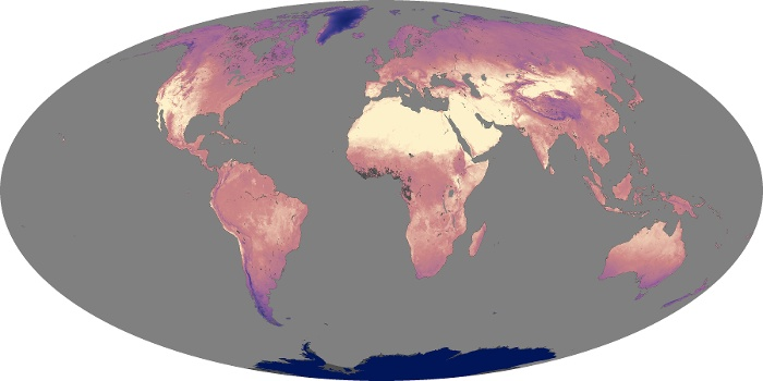 Global Map Land Surface Temperature Image 114