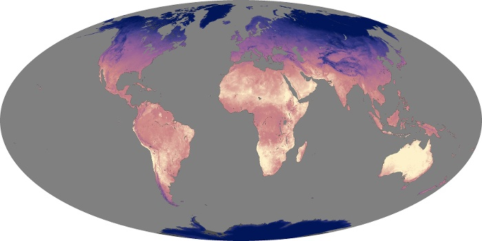 Global Map Land Surface Temperature Image 117