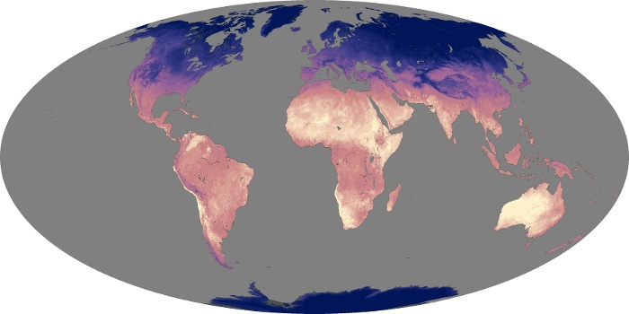 Global Map Land Surface Temperature Image 121