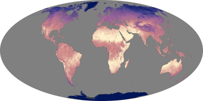 Global Map Land Surface Temperature Image 129