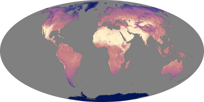 Global Map Land Surface Temperature Image 136