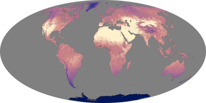 Global Map Land Surface Temperature Image 137