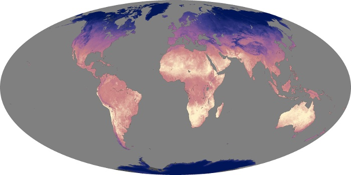 Global Map Land Surface Temperature Image 142