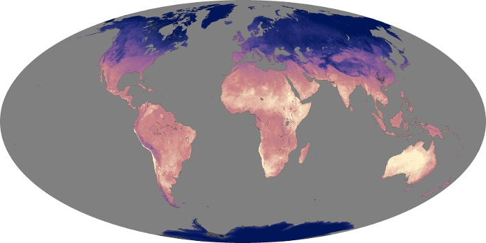 Global Map Land Surface Temperature Image 144