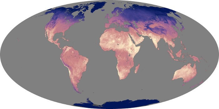 Global Map Land Surface Temperature Image 146