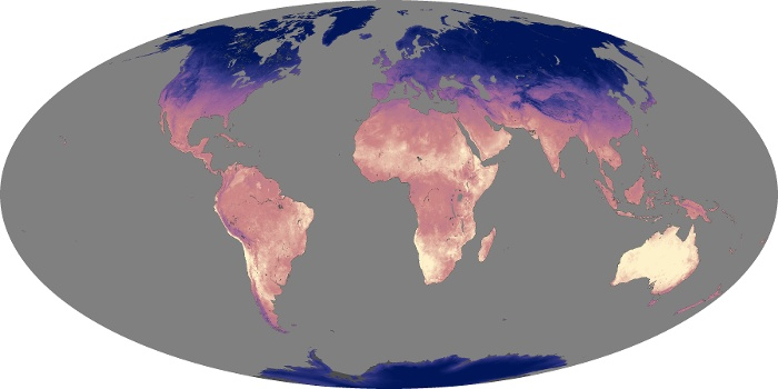 Global Map Land Surface Temperature Image 155