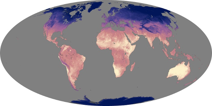 Global Map Land Surface Temperature Image 156