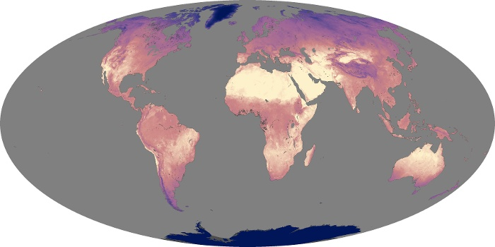 Global Map Land Surface Temperature Image 164